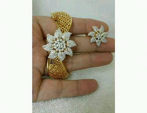 Earrings er-486