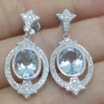 Earrings er-510