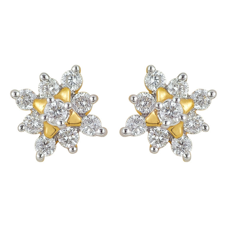 Earrings er-71